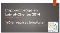 L'apprentissage en Loir-et-Cher en 2014 - Enquête